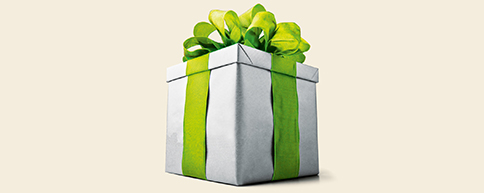 Gift-wrapped present with a large green bow