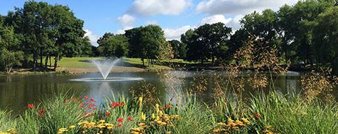 Wivenhoe Park lake
