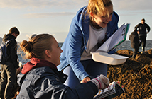 Two students conducting research on beach