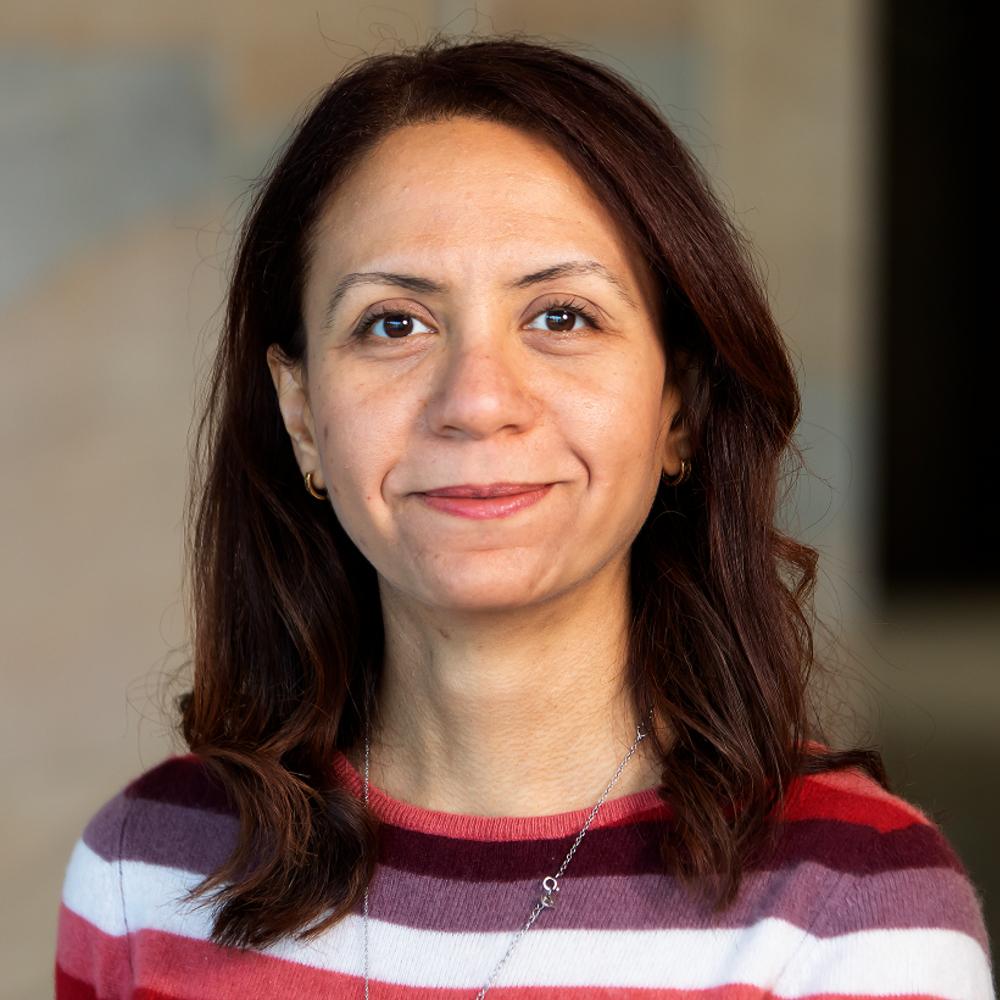 Dr Mays Al-Naday