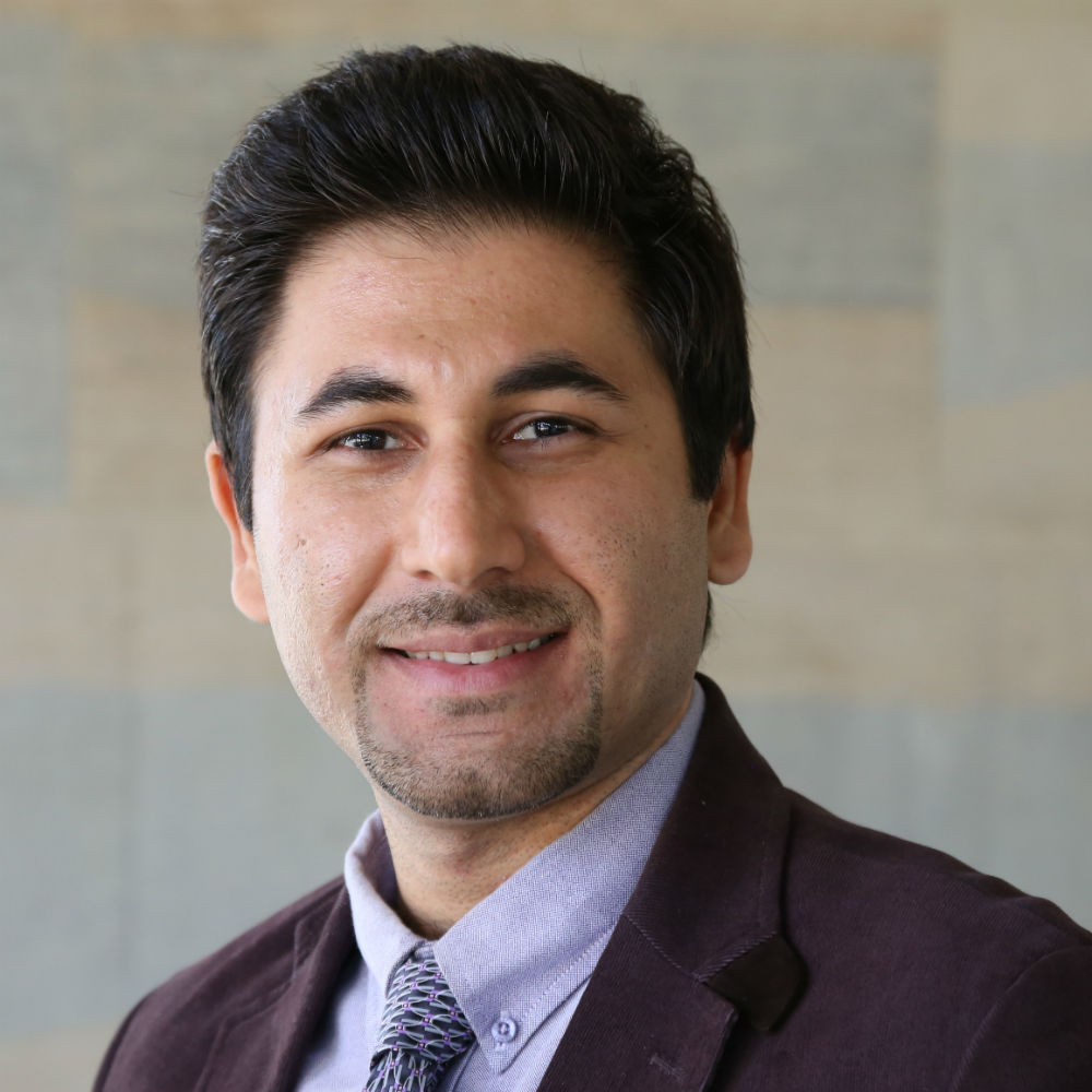 Dr Hossein Anisi