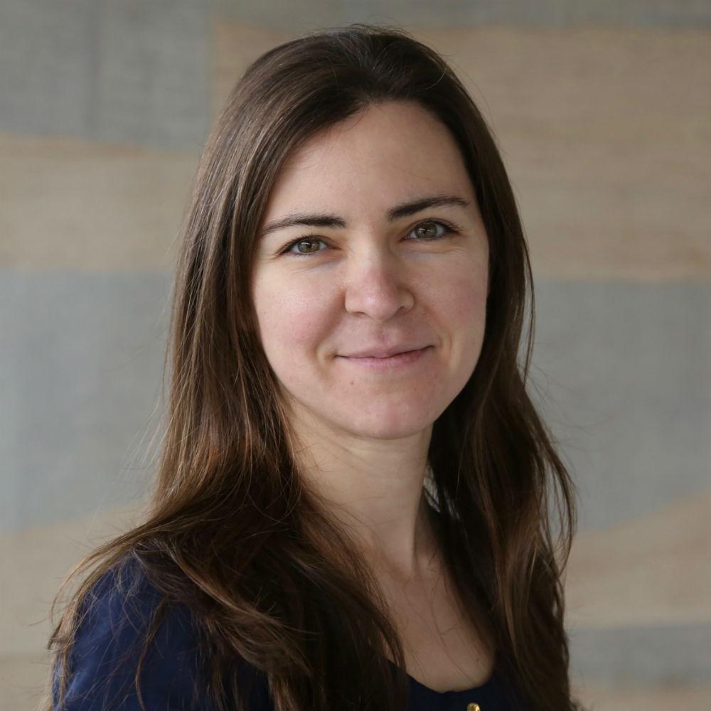 Dr Eirina Bourtsoulatze