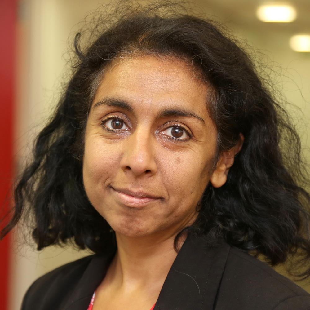 Professor Meena Kumari