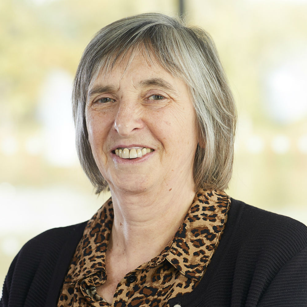 Professor Christine Raines