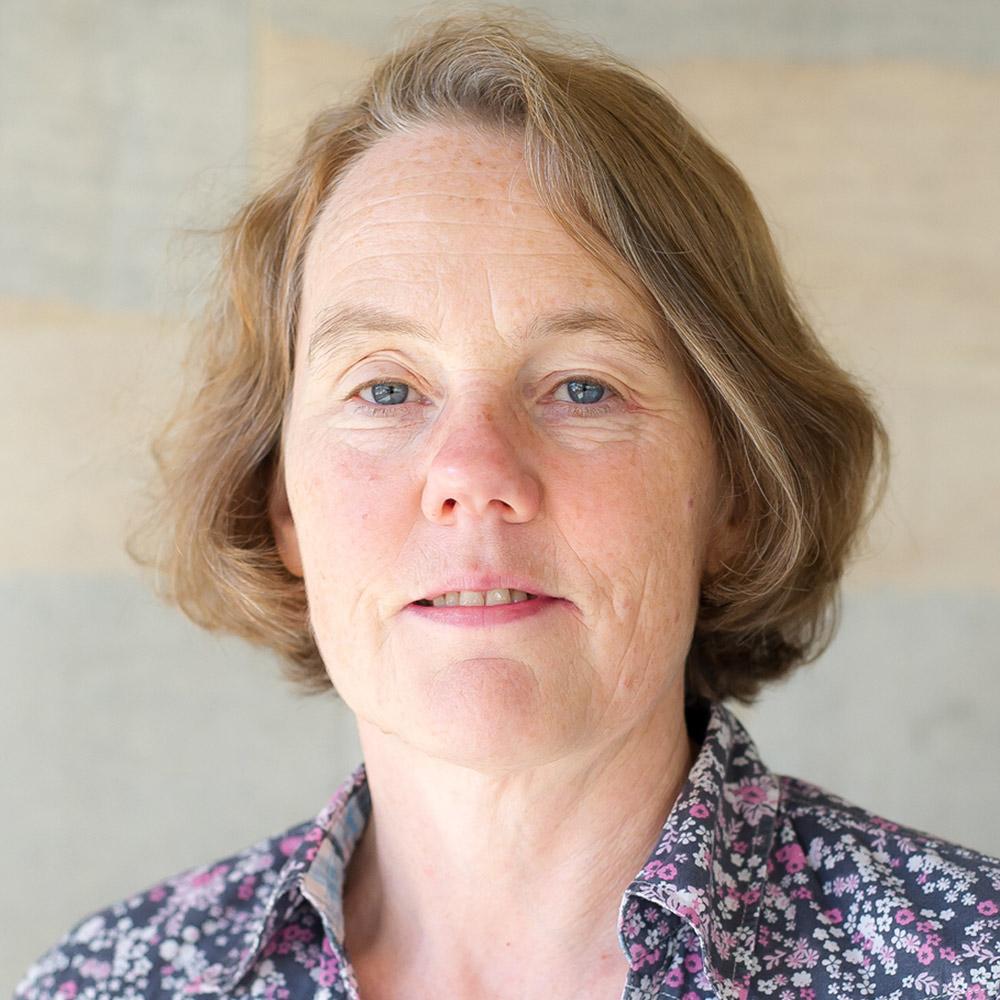 Professor Alison Rowlands