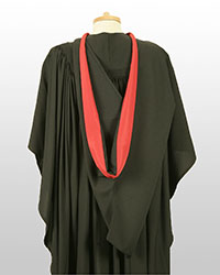 Foundation degree gown back